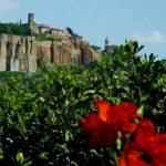 visite guidée des monuments d'Orvieto à la renaissance