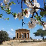 visiter Agrigente au printemps