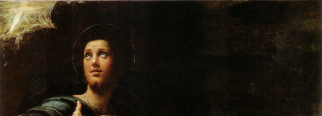 Saint Roch de Parmigianino