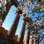 vallée des temples Agrigente